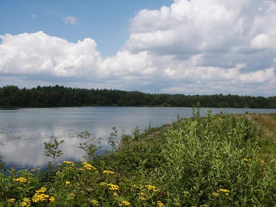 Deze foto is ingezonden door Ingrid van der Cruijsen uit Mill en toont de prachtige natuur van het tussen Mill en Langenboom gelegen recreatiegebied de Kuilen - augustus 2007.