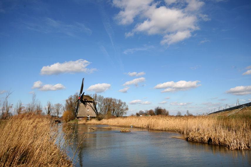 Prachtige foto van de omgeving van de molen te Geldermalsen, ingezonden door Marinus de Keijzer uit Rhenoy en genomen op 14 maart 2008.