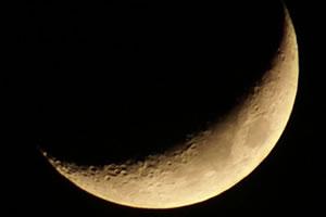 hoe-maan