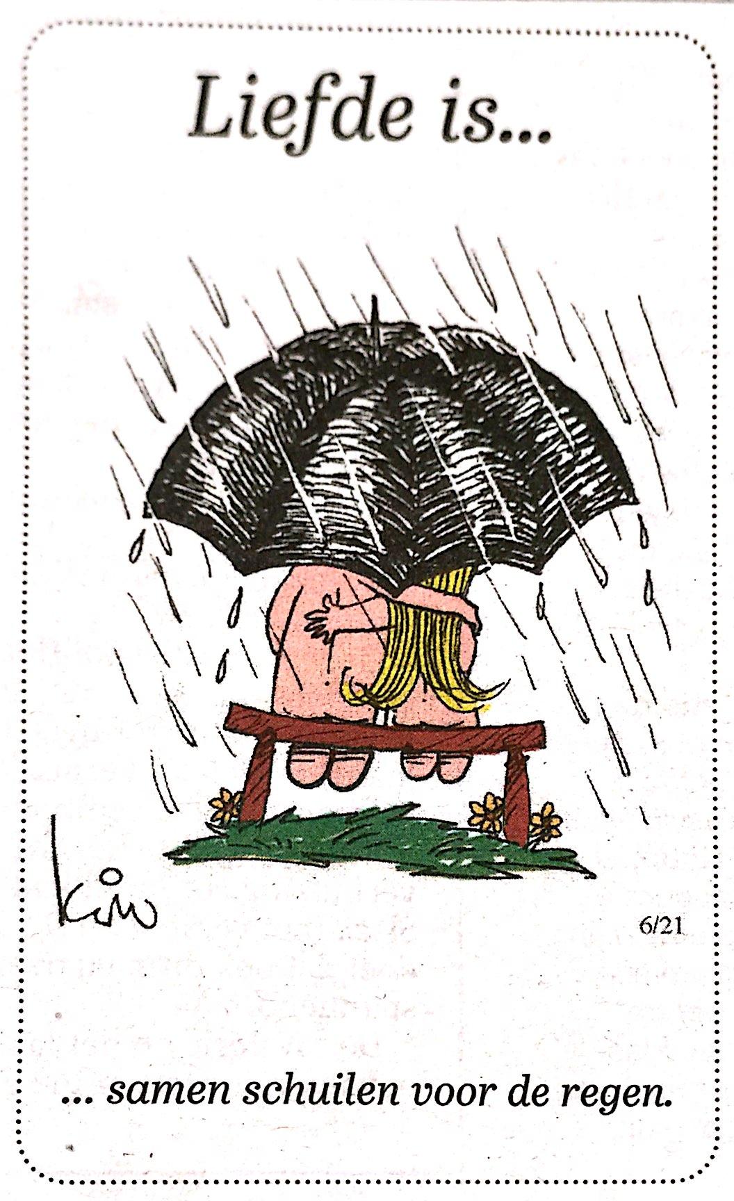 Afbeeldingsresultaat voor humor slecht weer