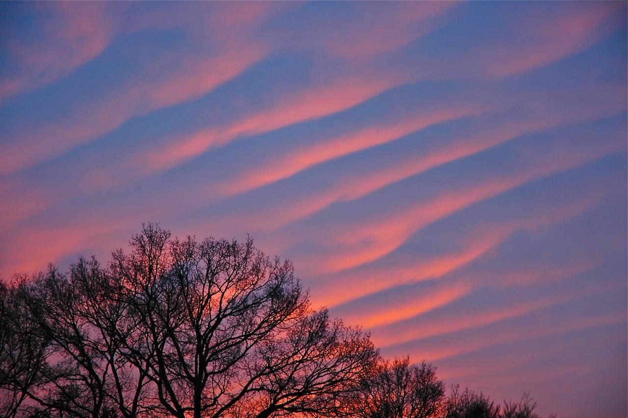 Een prachtige foto van Altocumulus Undulatus, golfwolken beschenen door de net opkomende zon op 3 december 2012 (foto Sarike de Zoeten).