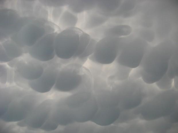 """De familie Smits stond op 9 juni 2014 bij Signal de Botrange (het hoogste punt van België) en mocht daar deze prachtige Mammatuswolken aanschouwen. Let op de structuren tussen de """"borsten""""."""