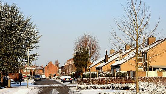 De eerste winterse neerslag van het jaar in Posterholt - Limburg (foto gemaakt door Ajan Everstijn op 31 januari 2012).